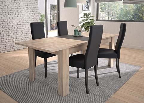 table salle a manger ALBIN 04
